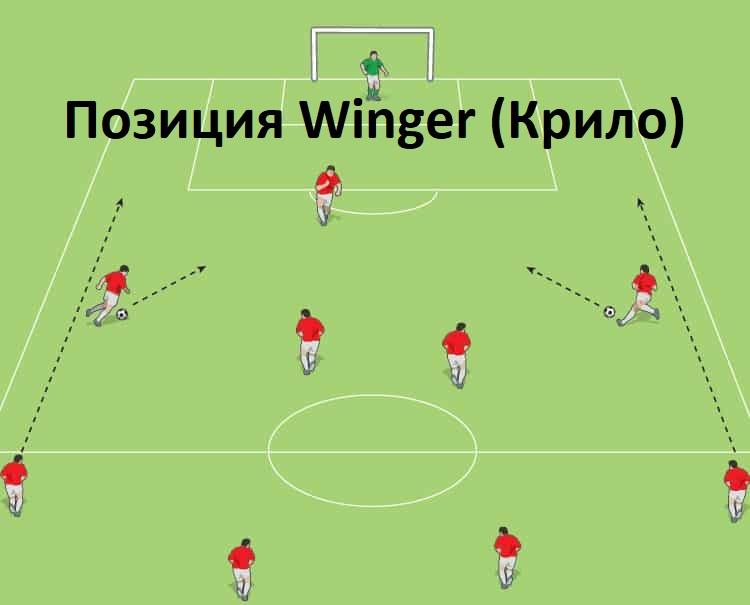 Позиция Winger